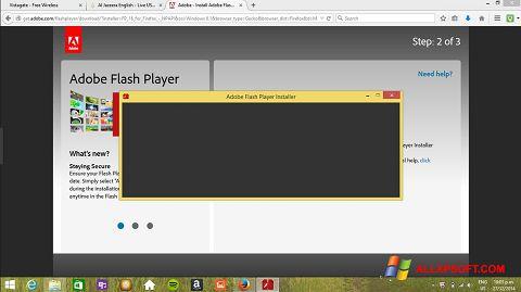 Ekraanipilt Adobe Flash Player Windows XP